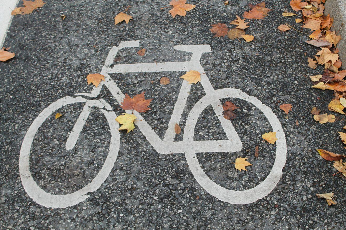 Fahrradzeichen auf einem Weg mit Herbstblättern